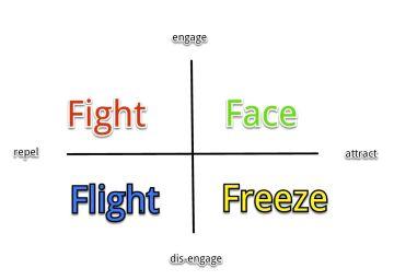 6e2a9-fightorflight
