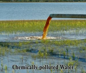 Chemically-polluted-Water
