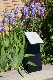 Poetry displayed on a metal pedestal outside the downtown Bellingham Library